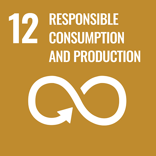 UN Sustainable Development Goals icon for Responsible Consumption And Production